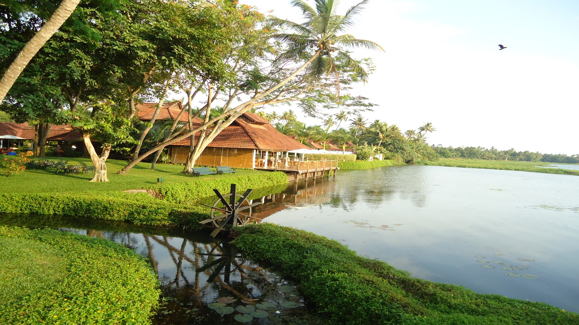 best-luxury-resorts-in-kerala-for-honeymoon