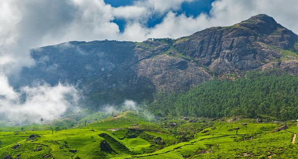 Misty Munnar Package