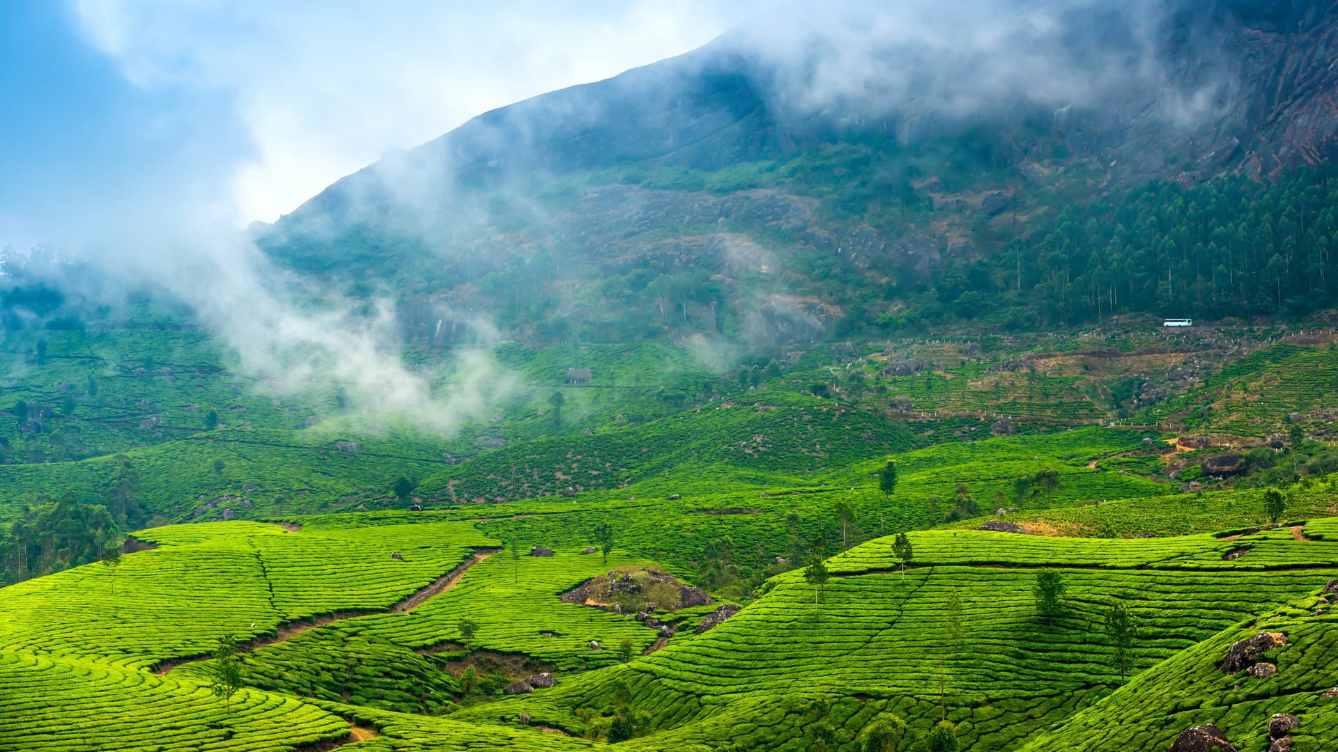 spectacular-kerala-holiday-package
